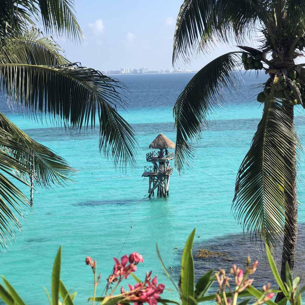 Slow Dive Pazifik Mexiko